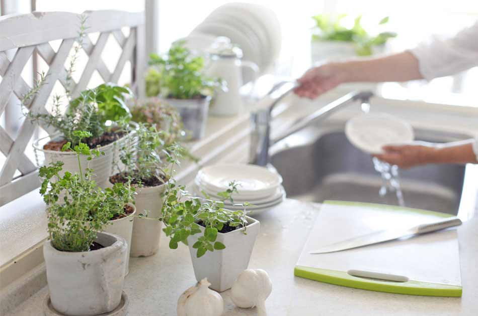 A woman washes dishes at her sink surrounded by plants